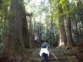 熊野古道大門坂の石畳みを歩いて熊野那智大社参拝