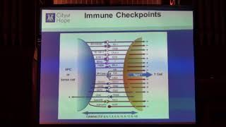 """529. Dr Tanya Dorff , """"Progress and Pitfalls with Immunotherapy in Prostate Cancer, 2018-07-26"""