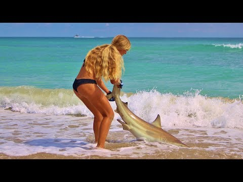 How To Catch Sharks Fishing From The Beach With Tips And Tricks