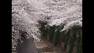 「神田川」は1973(昭和48)年9月20日に発売された、かぐや姫(当時のグ...