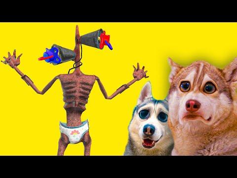 РЕБЕНОК СИРЕНОГОЛОВЫЙ НАС ПУГАЕТ! НОЧЬ С SCP МОНСТРАМИ!! (Хаски Бандит) Говорящая собака