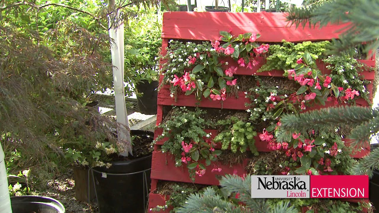 Vertical garden strawberries - Pallet Planter Youtube