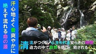 第17回清流ウォーキング~不動滝(三階滝)コース~ thumbnail