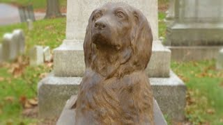 People Are Leaving Sticks At Grave Of Dog Who Died 100 Years Ago