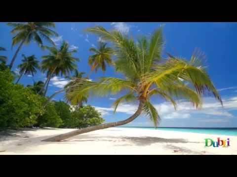 Das DubLi Cayman Islands Resort (German ~ Deutsch)