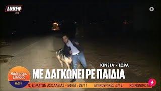 Γουρούνι την πέφτει live σε ρεπόρτερ του ΑΝΤ1 και τον δαγκώνει | Luben TV