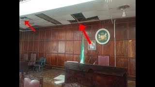 Breaking: Snake chases lawmakers out of Ondo Assembly
