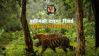 Valmiki Tiger Reserve    वाल्मिकी टाइगर रिज़र्व    Valmiki Wildlife Sanctuary