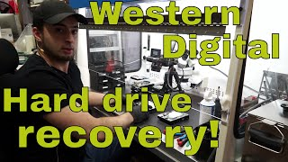 Western Digital hard drive data recovery: heads swap