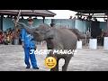 Popular Videos - East Lampung Regency & Crowd
