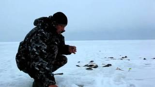 Рыбалка на Рыбинке: безнасадка, безмотылка, нимфа..