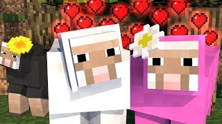 Sheep Life 1 - Minecraft Animation by Bitbrush Animations A white s...