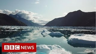Greenland's rapidly vanishing glaciers - BBC News