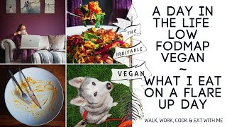 A Day in the life of a low FODMAP vegan / What I eat on an IBS flare up day / Gut health update