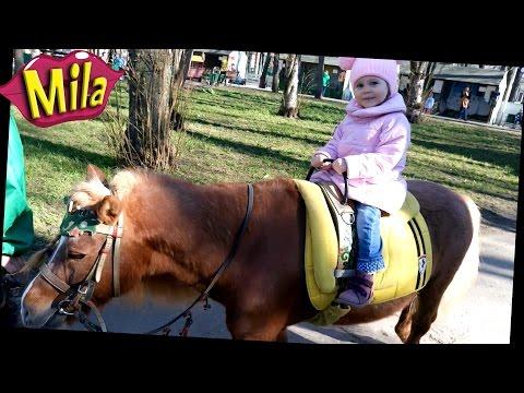 Детский Контактный ЗООПАРК 🐇🐔🐑 Катаемся на Пони 🐎 Домашние Животные для Детей 🐓🐰 Учим Звуки Животных