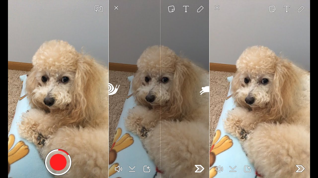 How to Use Snapchat Video Filters: Slow Mo, Fast & Rewind