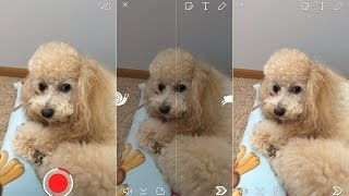 How To Use Snapchat Video Filters Fast Forward, Slow Motion, Reverse
