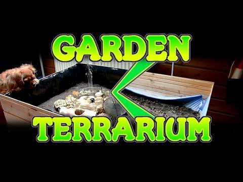 How to Make Tortoise Terrarium or Interior Garden at Home | D Workshop