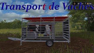 FS17 / Le Petit Limousin / Les Vaches / Le Changement de Prés