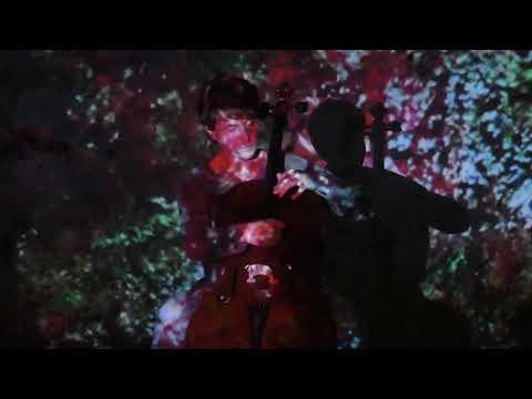 VIDEOBAR #46