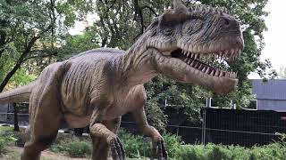 Выставка динозавров ВДНХ 2018 (живые динозавры) часть 2
