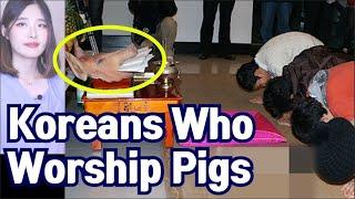 Koreans who Worship Pigs! Bizarre culture of Korea