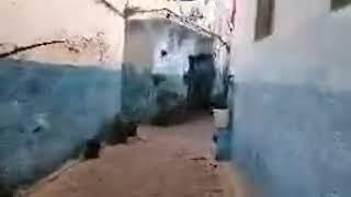 مباشرة من فاس: من داخل أنظف حومة بفاس الجديد.. شوفو مبادرة ديال وليدات الحومة