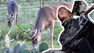 Opening Day Whitetail | Bucks Everywhere on New Lease!