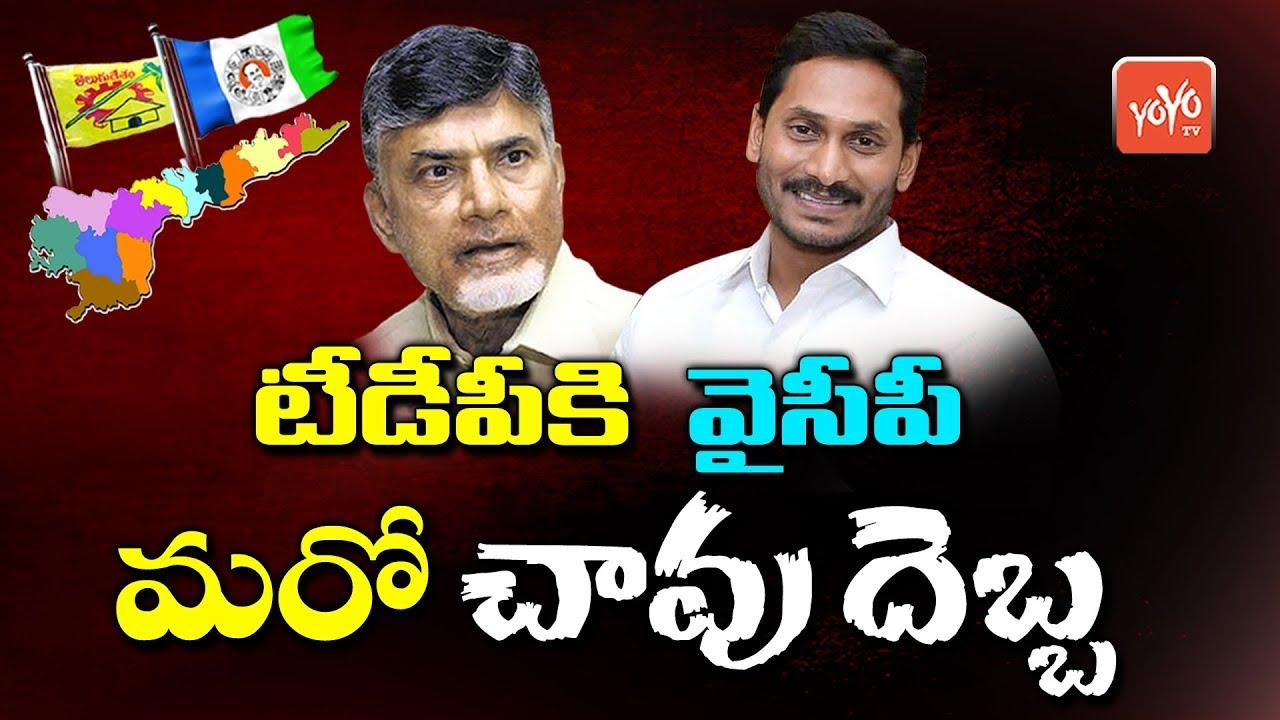 YSRCP To Give Strong Punch To TDP | YS Jagan | Chandrababu Naidu | AP News  | YOYO TV Channel