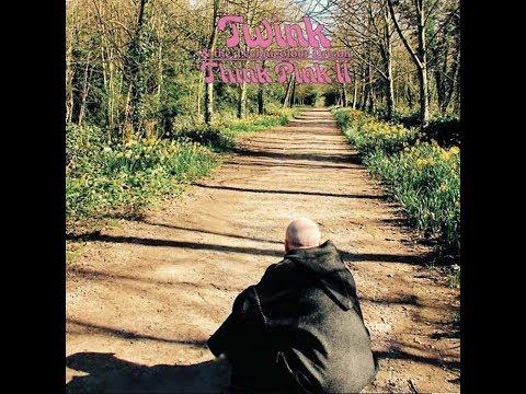 Twink & The Technicolour Dream - Think Pink II (2015) Full Album