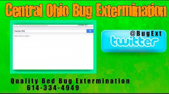 Bed Bug Exterminator 614-334-4949 Ohio Bed Bug Extermination
