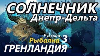 Солнечник Днепр Дельта / РР3 [ Русская Рыбалка 3,9 Гренландия ].