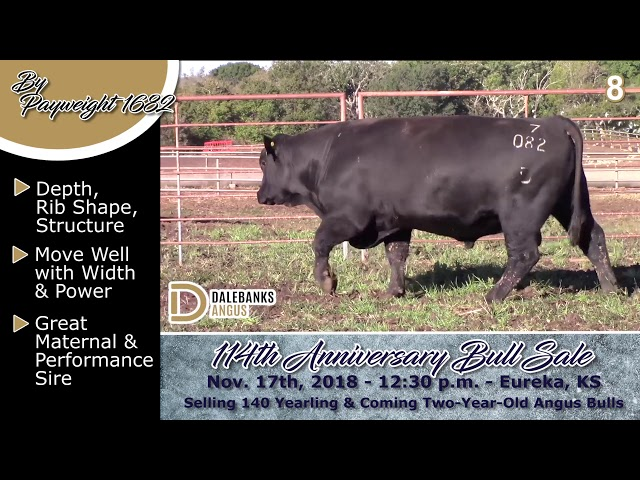 Reference Sire Review Payweight 1682