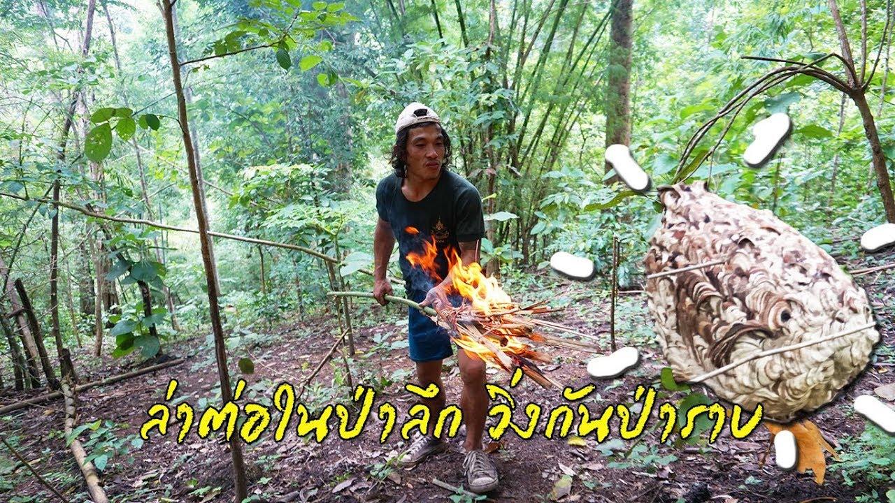 เข้าป่าเอาชีวิตรอด In The Jungle Ep.5 ล่าต่อในป่าลึก วิ่งกันป่าราบ