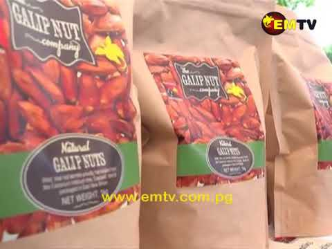 Newly Established Galip Nut Company Launch Product