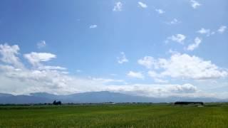 山形日和号(C11型) 中山町柳沢踏切付近