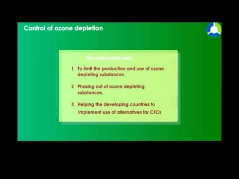 Control of Ozone Depletion