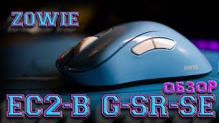 Игровая мышка Zowie EC2-B и коврик G-SR-SE Divina. Хорошие, но дорогие игровые девайсы