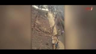 """نمر""""طائر"""".. حاصروه في منزل فقفز عبر سقفه نحو عامل الإنقاذ   صحيفة الاتحاد"""