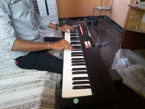 Yel zayli artichi on keyboard
