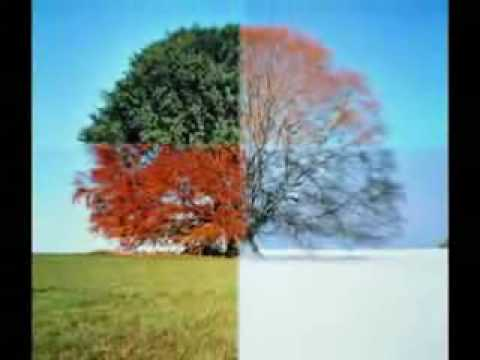 Jim Rohn Lesson of the seasons