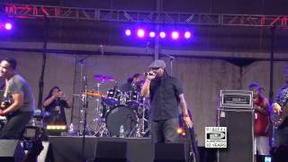 """No Other Love"" COMMON KINGS Live on Maui Hawaii"