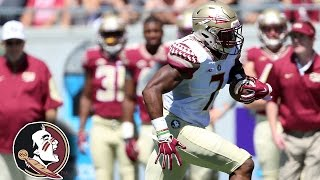Florida State Football Spring Game Highlights (2016)