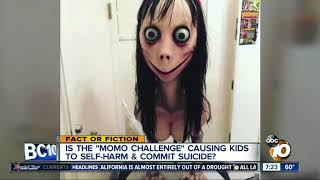 """Is the """"Momo Challenge"""" real?"""