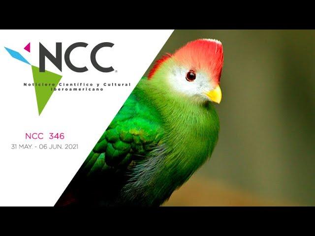 Noticiero Científico y Cultural Iberoamericano, emisión 346. 31 de mayo al 06 de junio del 2021