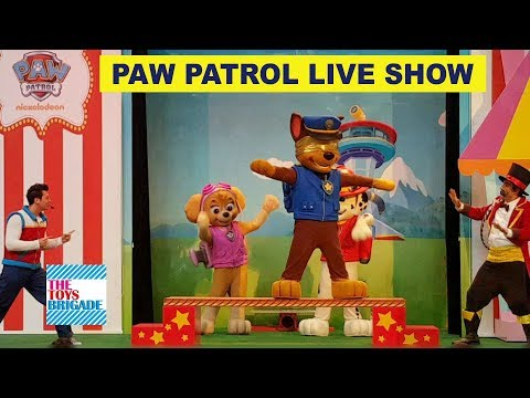 WATCH PAW PATROL perform a Circus Act- Marshall, Chase, Skye | Kids show 2017