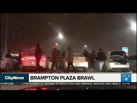 Brampton plaza brawl *Warning: graphic content*