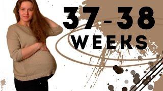 видео 38 неделя беременности