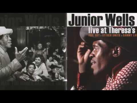 Junior Wells & Phil Guy   ~    Live At Theresa's 1975 ( Full Album )