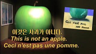 (RENE MAGRITTE) 르네마그리트 전시회. 초보…
